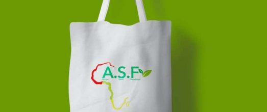 African Seed Foundation